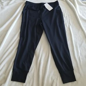 NWT Fabletics Lenny Cold Weather Jogger Pants